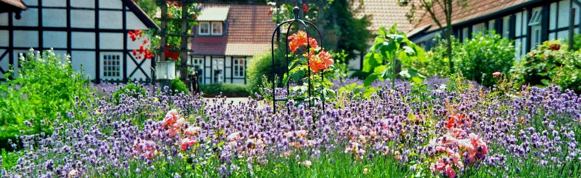 עשרה דברים חשובים על מזיקים בגינה